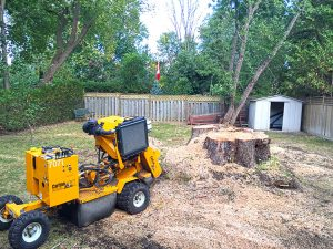a stump grinder sits in the backyard of a home, taking a break from grinding a very large tree stump