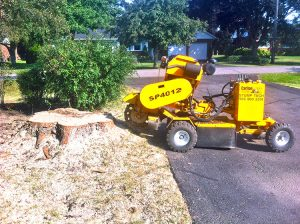a stump grinder sits on a driveway about to begin the process of removing a stump in the front yard of a home